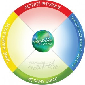 Wellness_Wheel_Fr